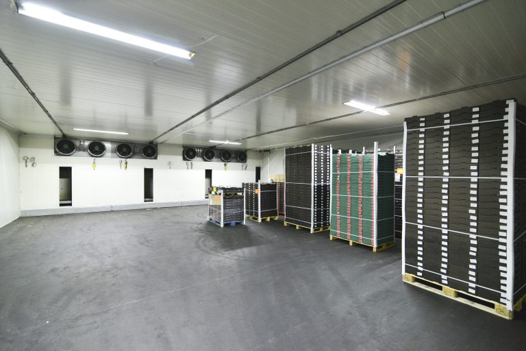 PRF-13-01-2020 Helmer b.v Breda047